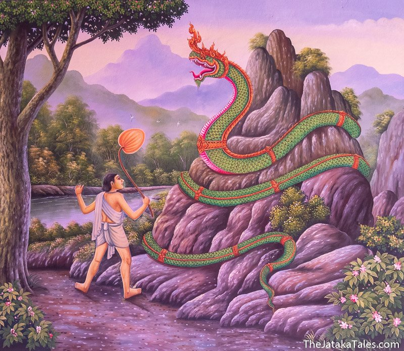 man looking at giant naga